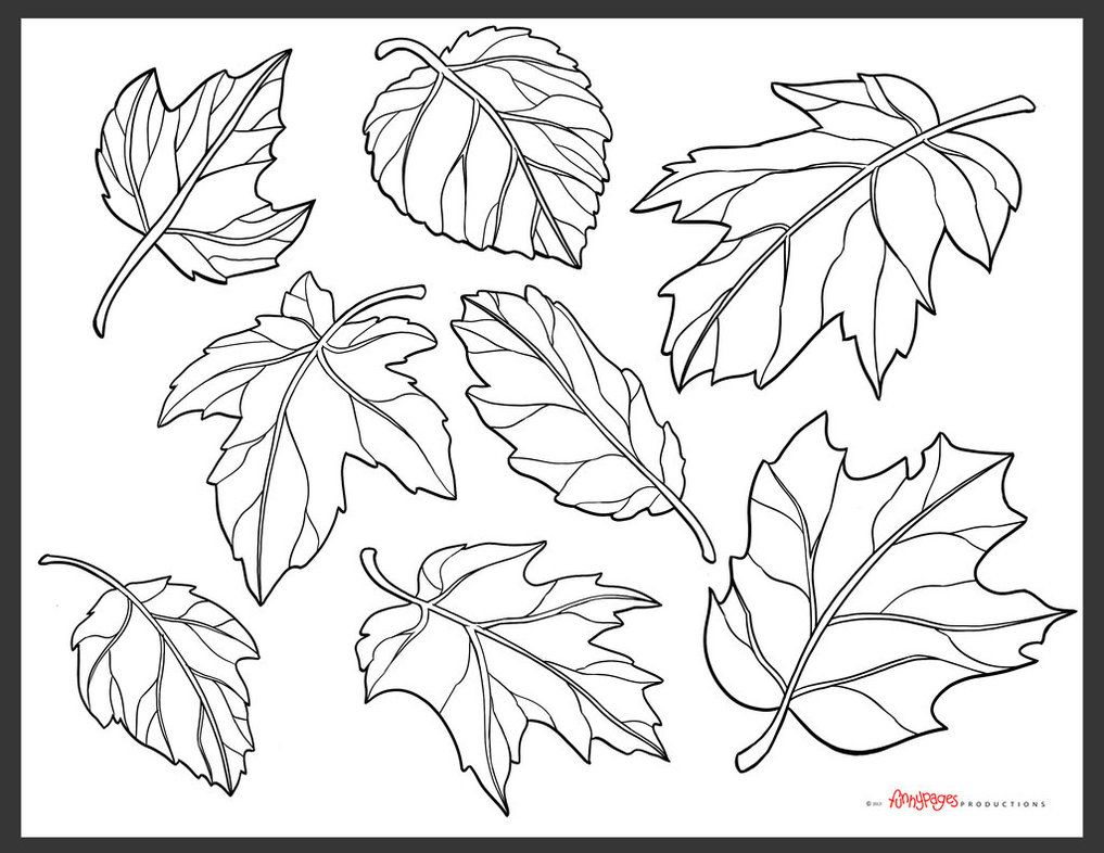 pumpkin and leaves coloring pages fall pumpkin coloring page images lÁ pinterest fall leaves and pumpkin coloring pages