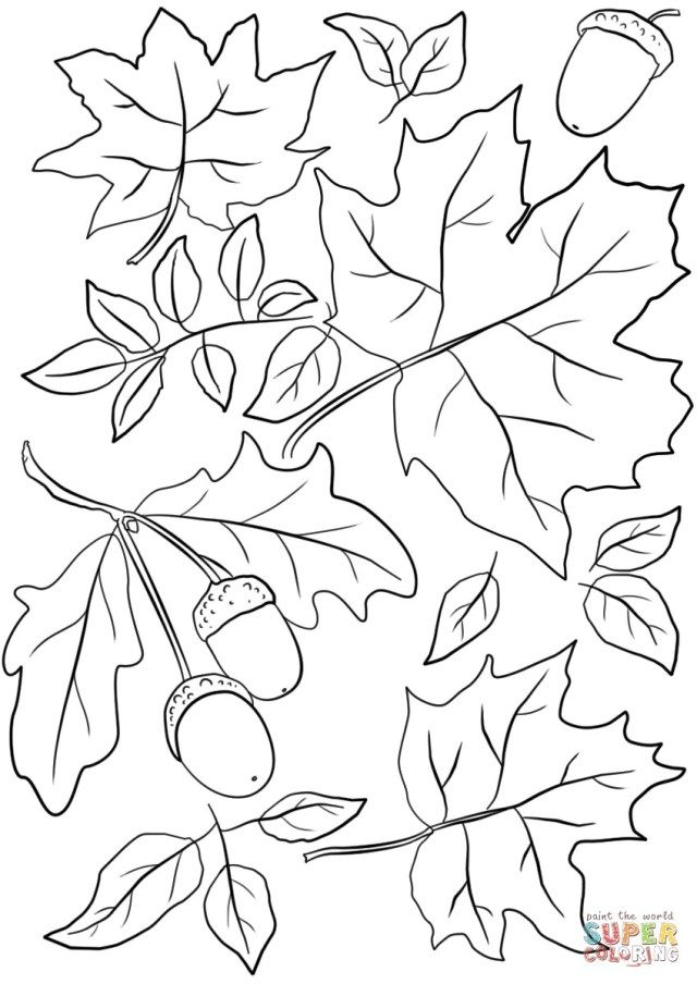pumpkin and leaves coloring pages free printable pumpkin coloring pages for kids cool2bkids leaves and pumpkin pages coloring
