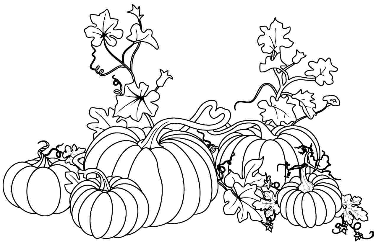 pumpkin and leaves coloring pages i like markers fall pumpkins class freebie pumpkin and coloring pages leaves