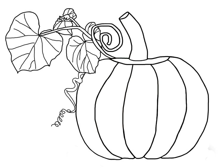 pumpkin and leaves coloring pages pumpkin and leaves coloring sheet leaves and coloring pumpkin pages