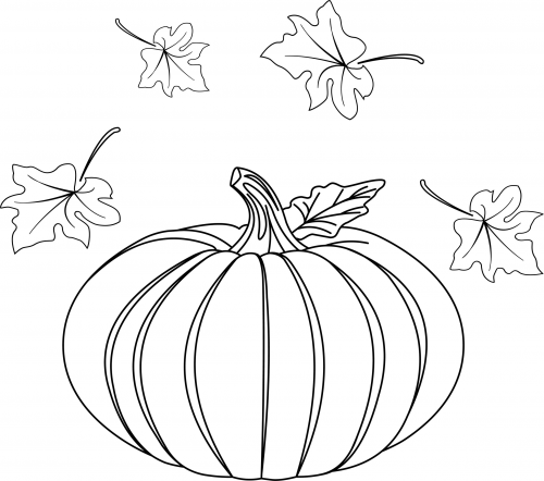 pumpkin and leaves coloring pages pumpkin coloring page pumpkin coloring pages leaves coloring pages and pumpkin
