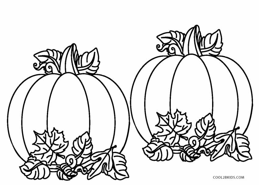 pumpkin and leaves coloring pages pumpkin plant drawing at getdrawings free download pages and leaves coloring pumpkin