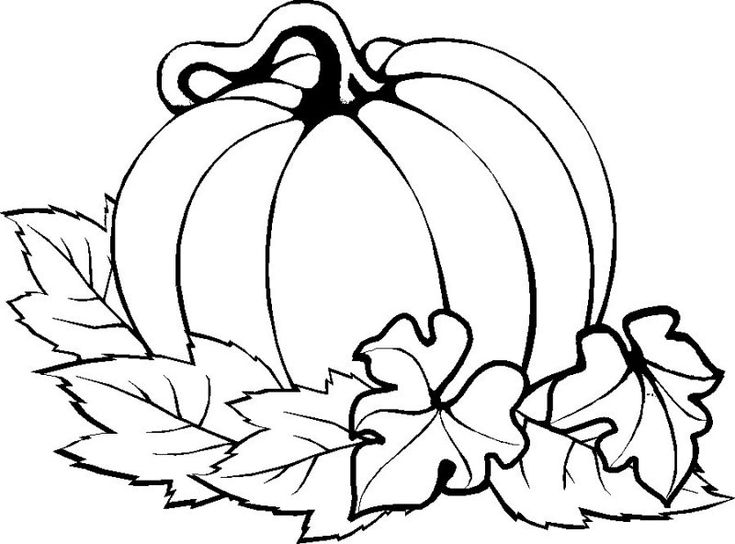 pumpkin and leaves coloring pages smiling pumpkin in leaves coloring sheet pages and pumpkin leaves coloring