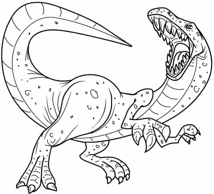 real coloring pages realistic drawing of animals at getdrawings free download pages coloring real