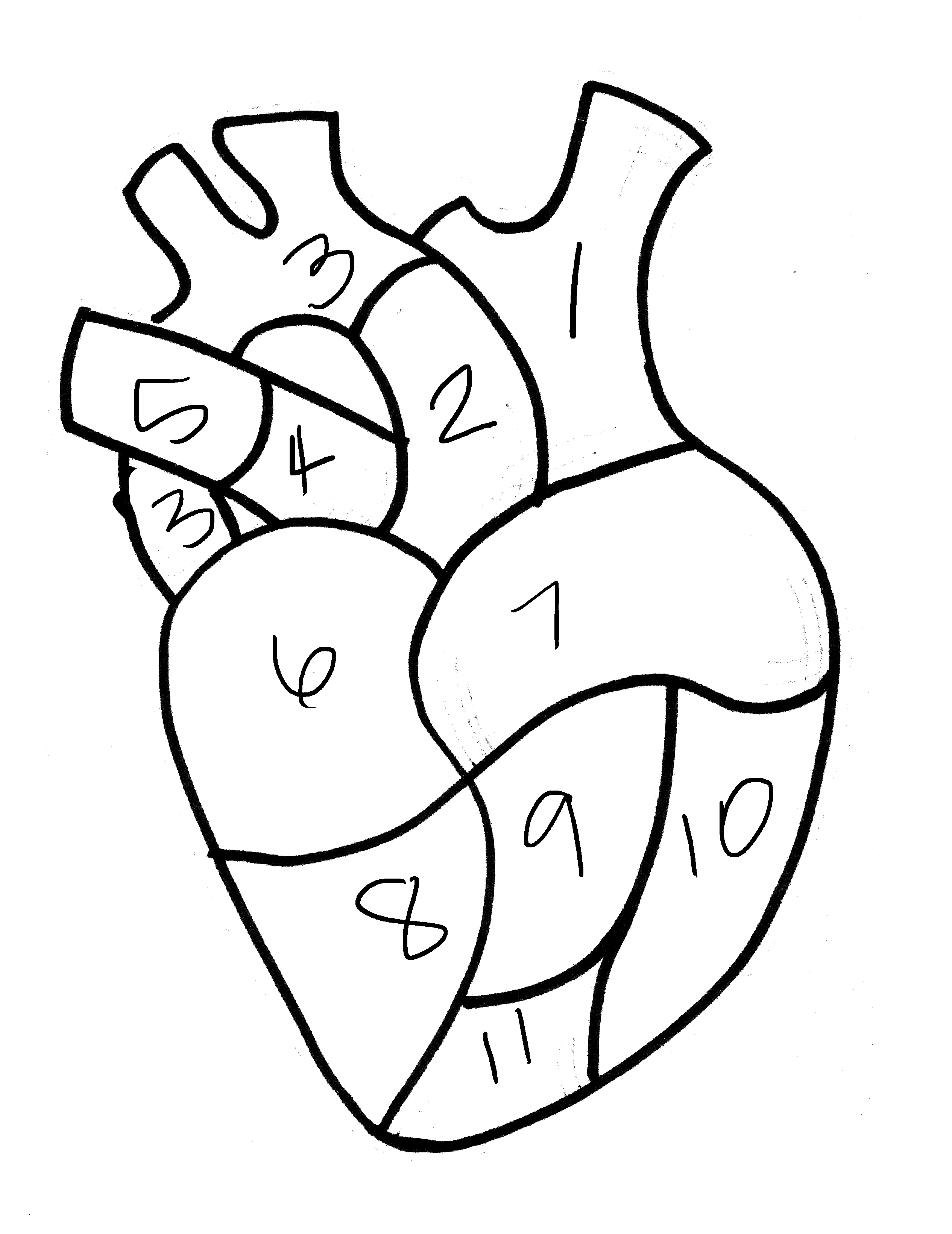 real heart coloring pages anatomical heart pillow cover hearts and sharts pages real heart coloring