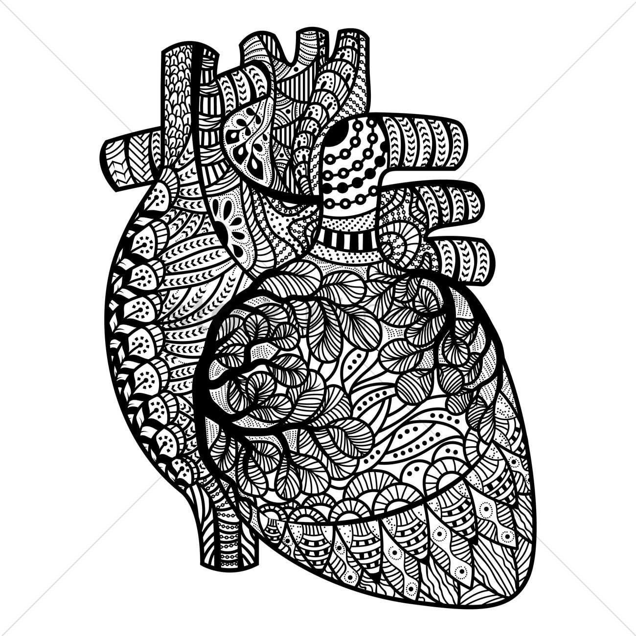 real heart coloring pages real human heart drawing at getdrawings free download pages real heart coloring