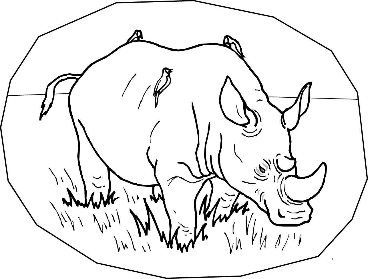 rhino coloring pages free printable rhinoceros coloring pages for kids pages coloring rhino