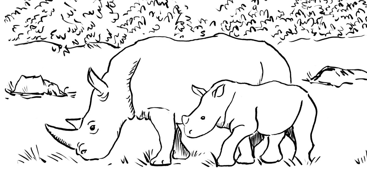 rhino coloring pages rhino coloring page art starts rhino coloring pages