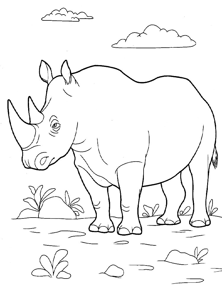 rhino coloring pages rhino coloring pages download and print rhino coloring pages coloring rhino pages 1 1