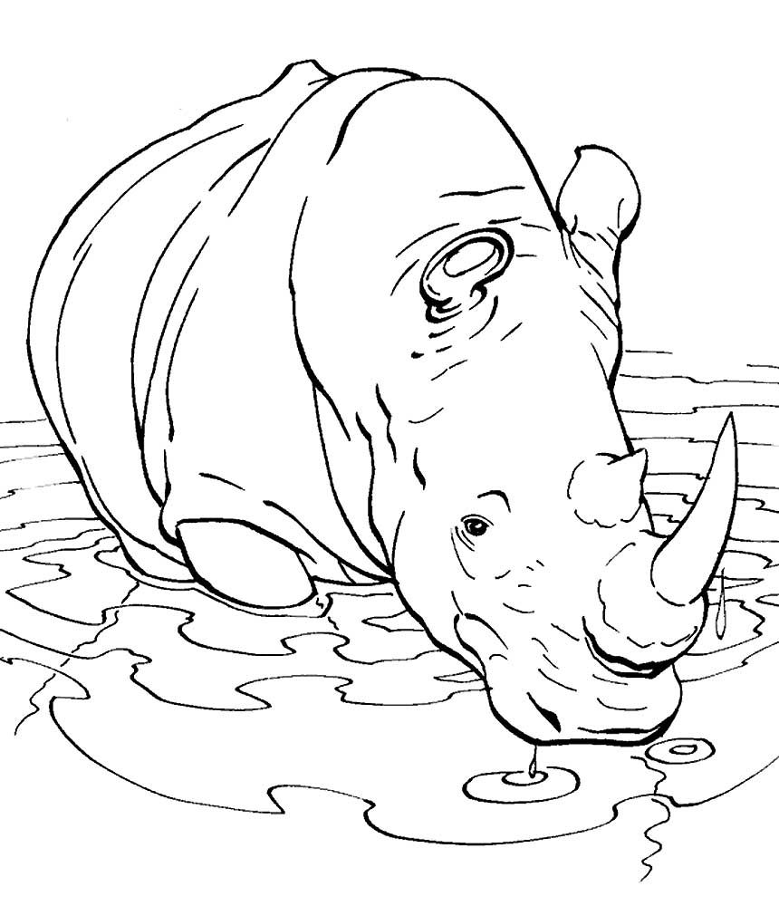 rhino coloring pages rhinoceros coloring pages to download and print for free coloring pages rhino