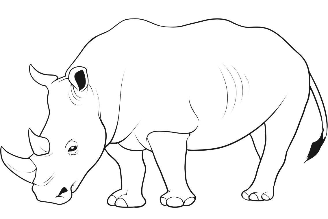 rhino coloring pages rhinoceros coloring pages to download and print for free coloring rhino pages