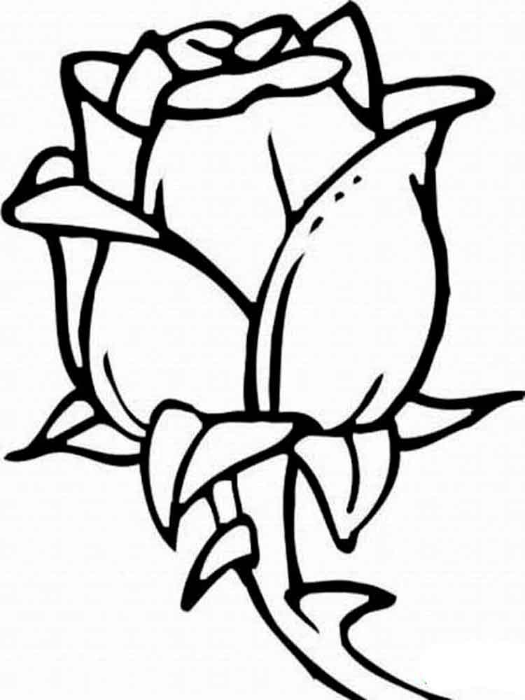 rose coloring pages to print printable rose coloring pages for kids cool2bkids coloring print rose pages to