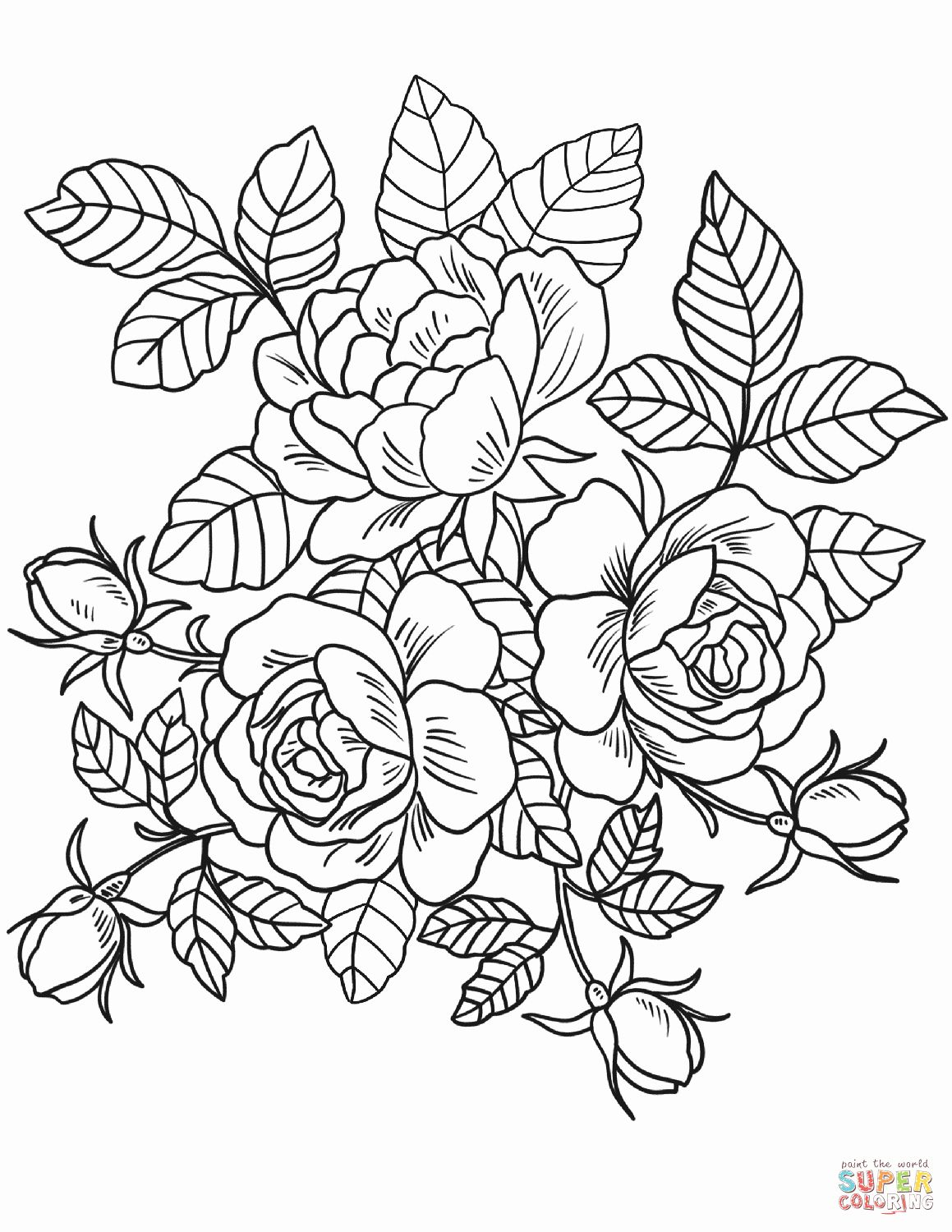 rose flower coloring pages free coloring pages flowers roses in 2020 rose coloring pages coloring flower rose