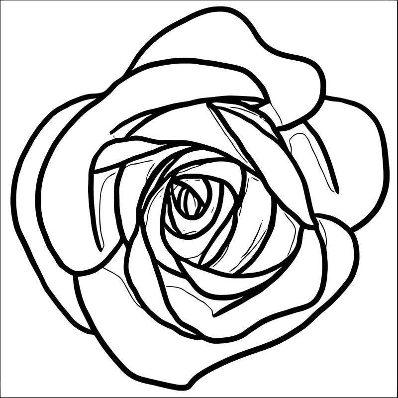 rose flower coloring pages rose flower coloring page 082 coloring sheets flower pages rose coloring