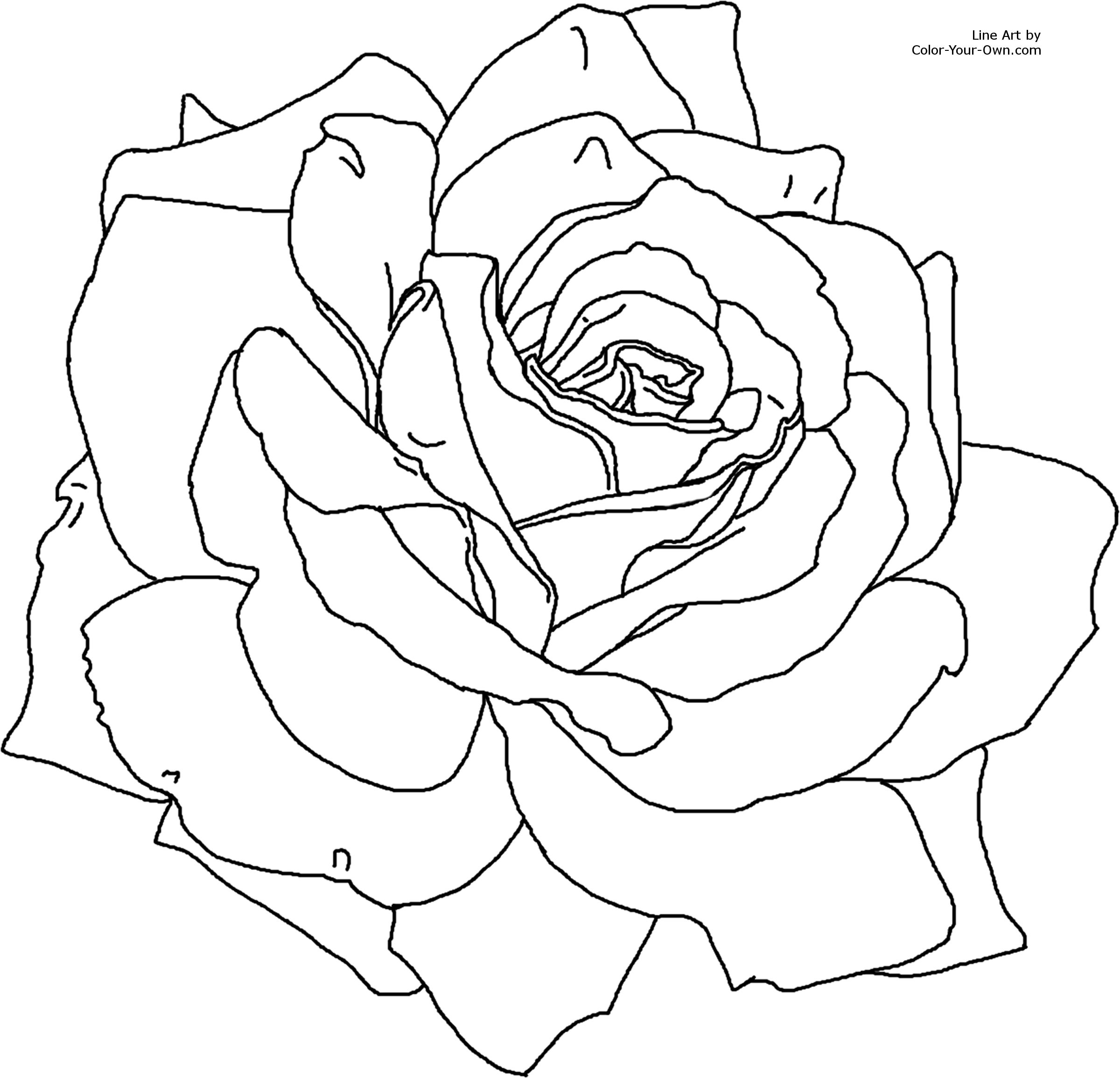 rose flower coloring pages rose flower coloring page rose pages coloring flower