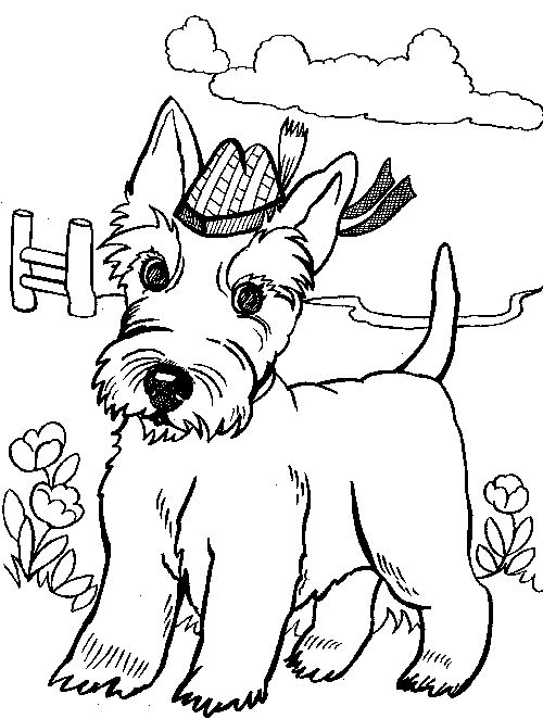 scottish colouring pages coloring pages are fun for children of all ages and are a scottish colouring pages