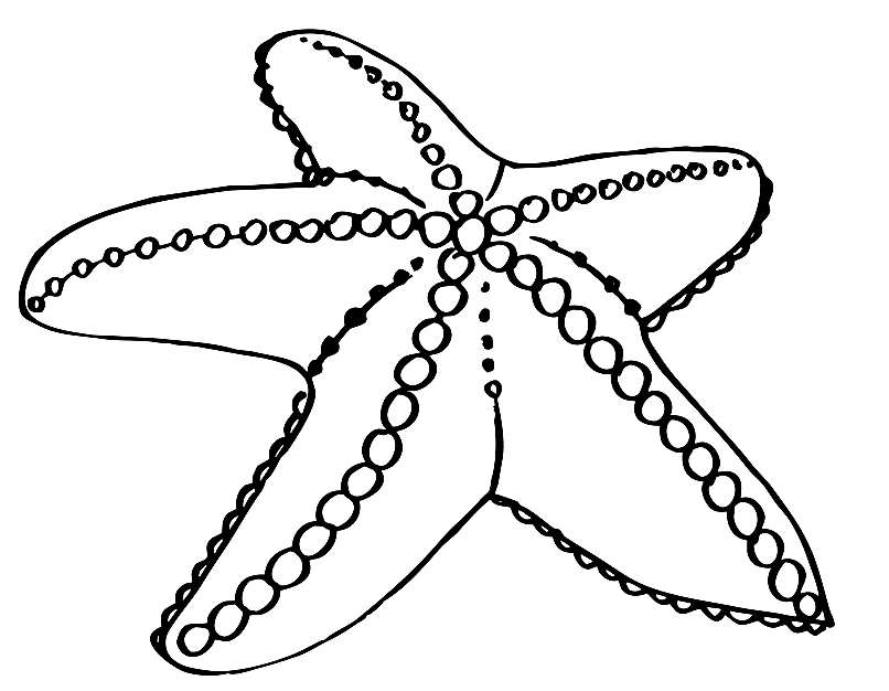 sea star coloring page free printable starfish coloring pages for kids star page sea coloring