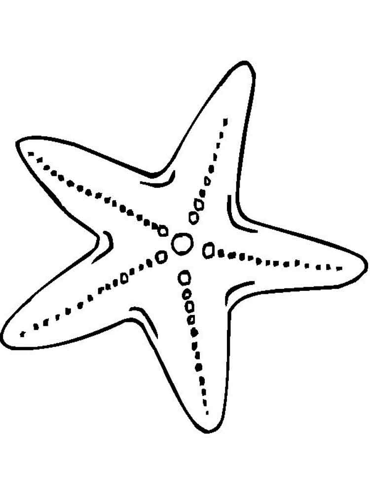 sea star coloring page seastar coloring page animals town animals color sheet sea page star coloring
