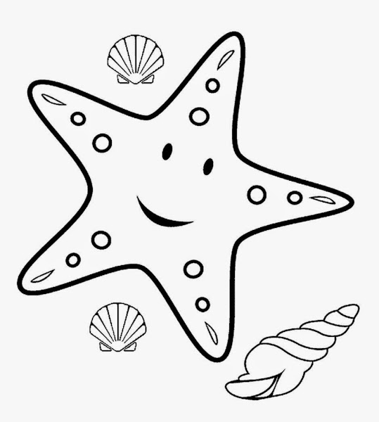 sea star coloring page starfish drawing template at getdrawings free download sea page coloring star