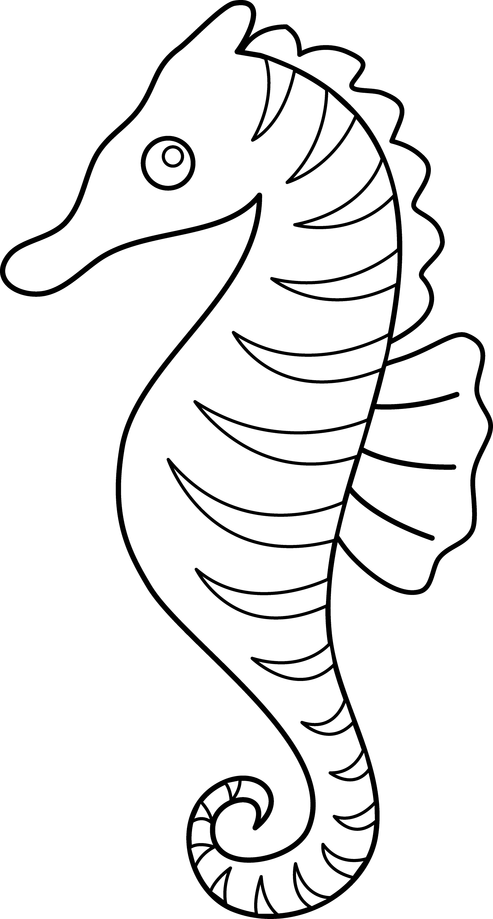 seahorse coloring sheet a very cute baby seahorse coloring page kids play color seahorse sheet coloring
