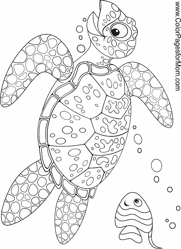 sealife coloring pages welcome to dover publications designs coloring books pages sealife coloring