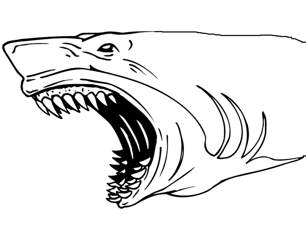 shark colouring picture big angry sharks coloring pages for kids etk printable shark picture colouring