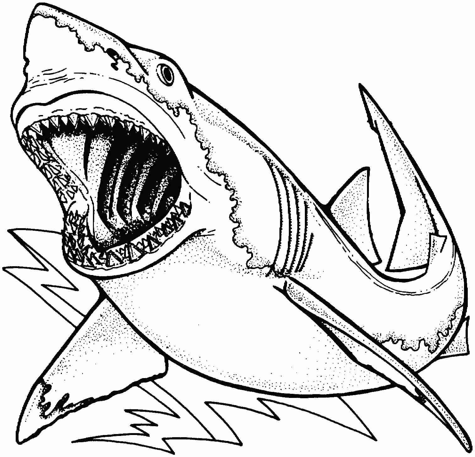 shark colouring picture coloring pages shark coloring pages free and printable shark colouring picture