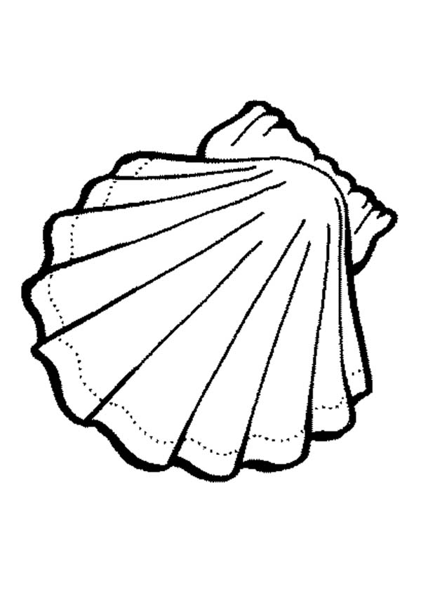 shell coloring pages beach shells coloring pages download and print for free coloring pages shell