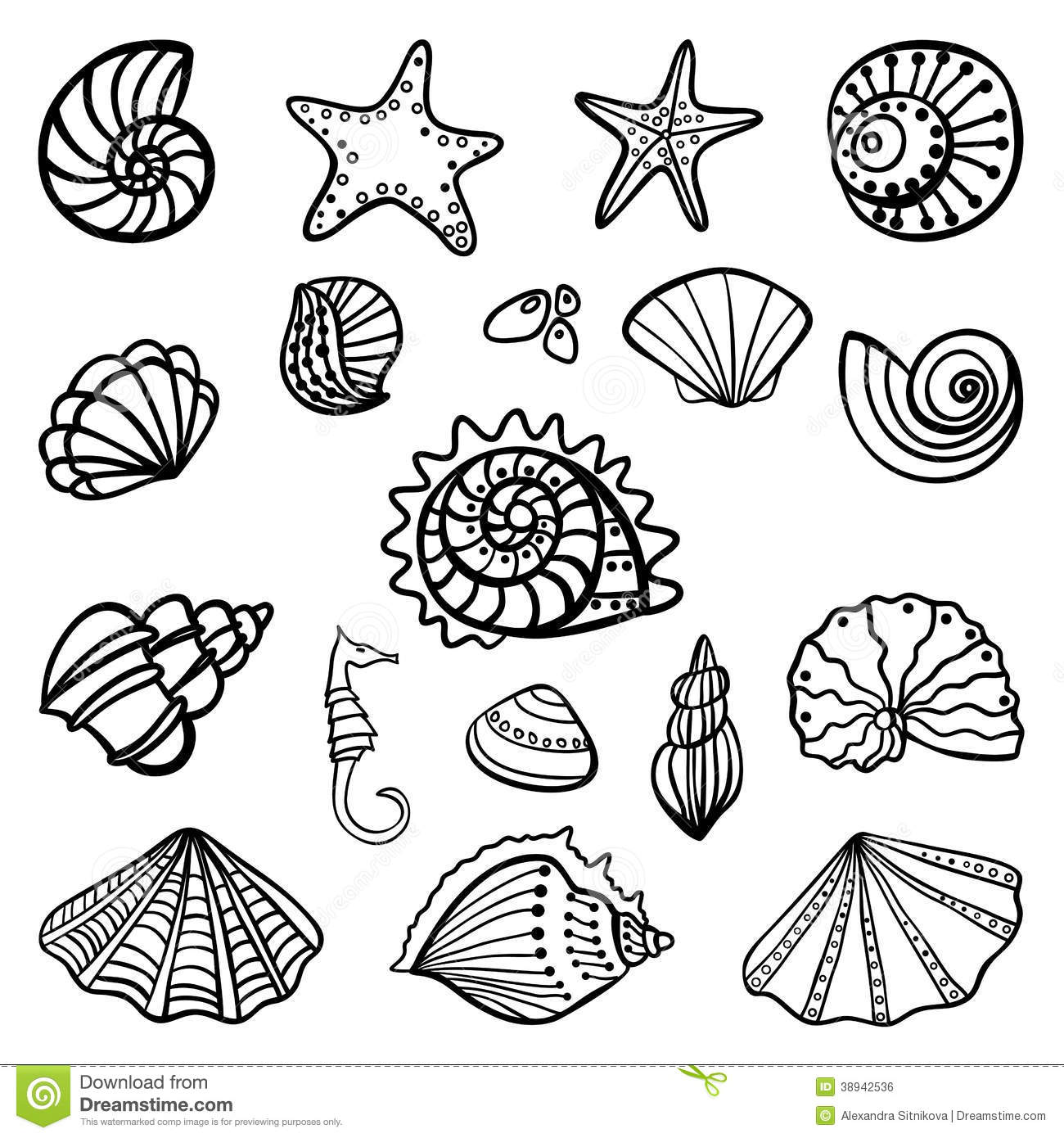 shell coloring pages beach shells coloring pages download and print for free pages shell coloring