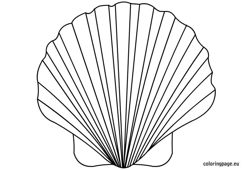 shell coloring pages shell coloring pages to download and print for free pages shell coloring