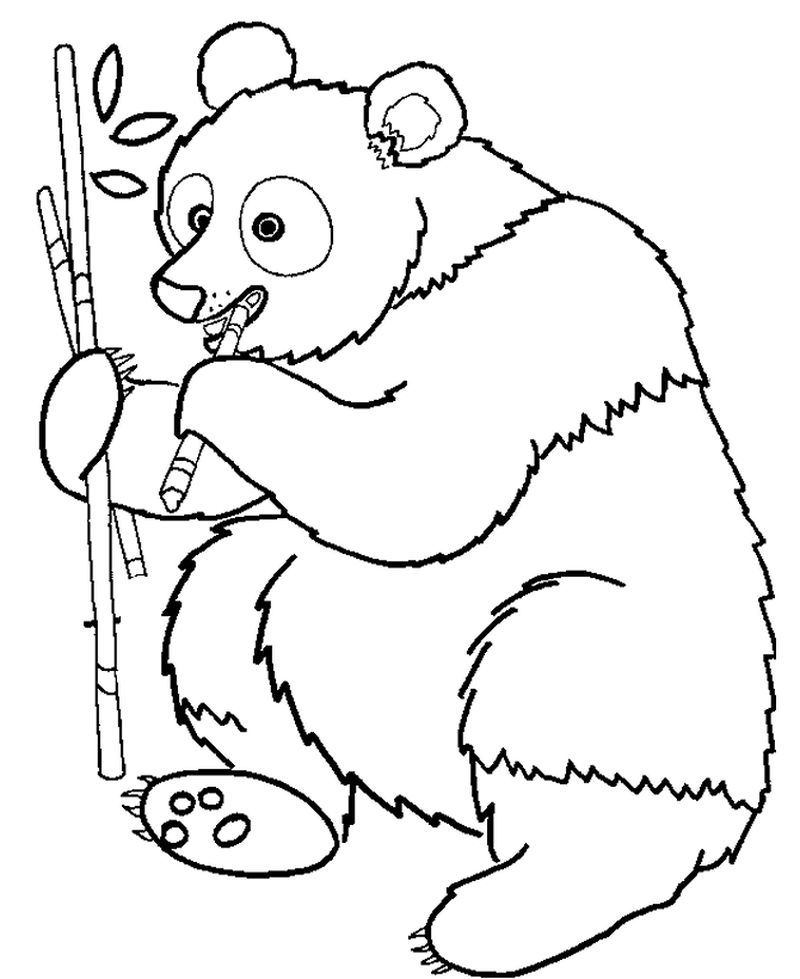 simple panda coloring pages get this cute baby panda bear holding flowers coloring page coloring panda pages simple