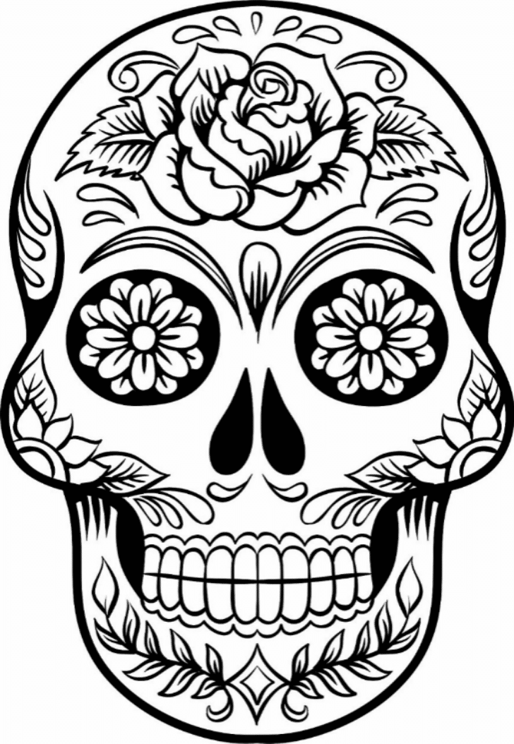 skulls to color free printable skull coloring pages for kids skulls to color