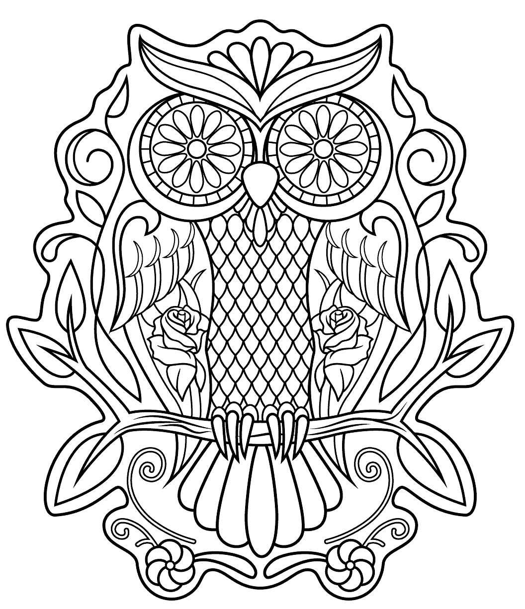 skulls to color printable skulls coloring pages for kids cool2bkids color to skulls