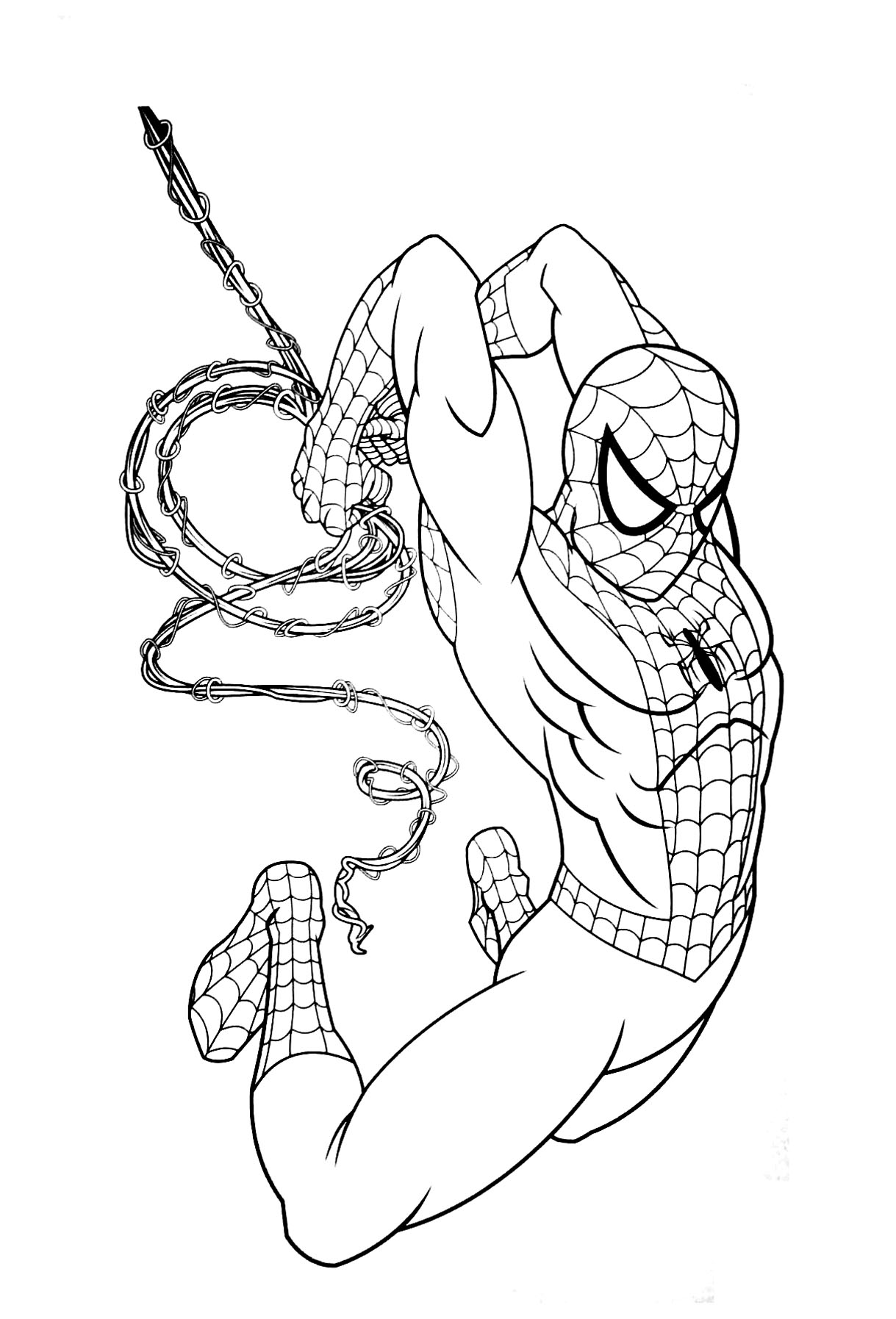 spiderman picture to color free printable spiderman coloring pages for kids picture spiderman color to