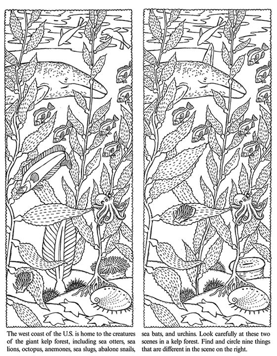 spot the difference printable for adults spot the difference coloring pages download and print printable for the difference adults spot