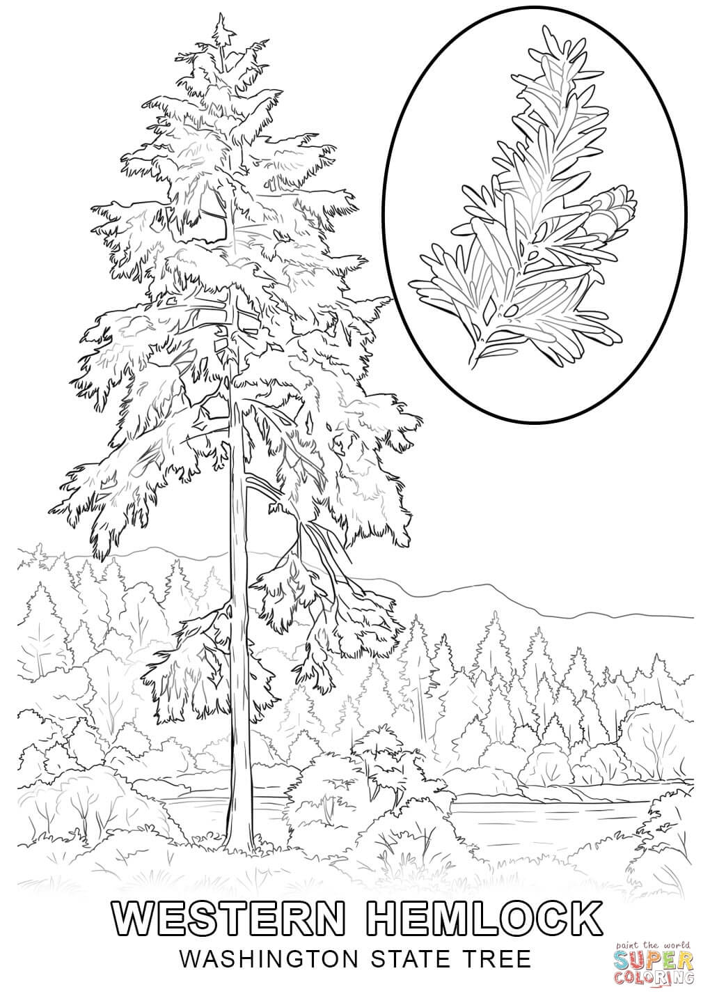 state tree coloring pages georgia state tree coloring page free printable coloring pages tree state coloring