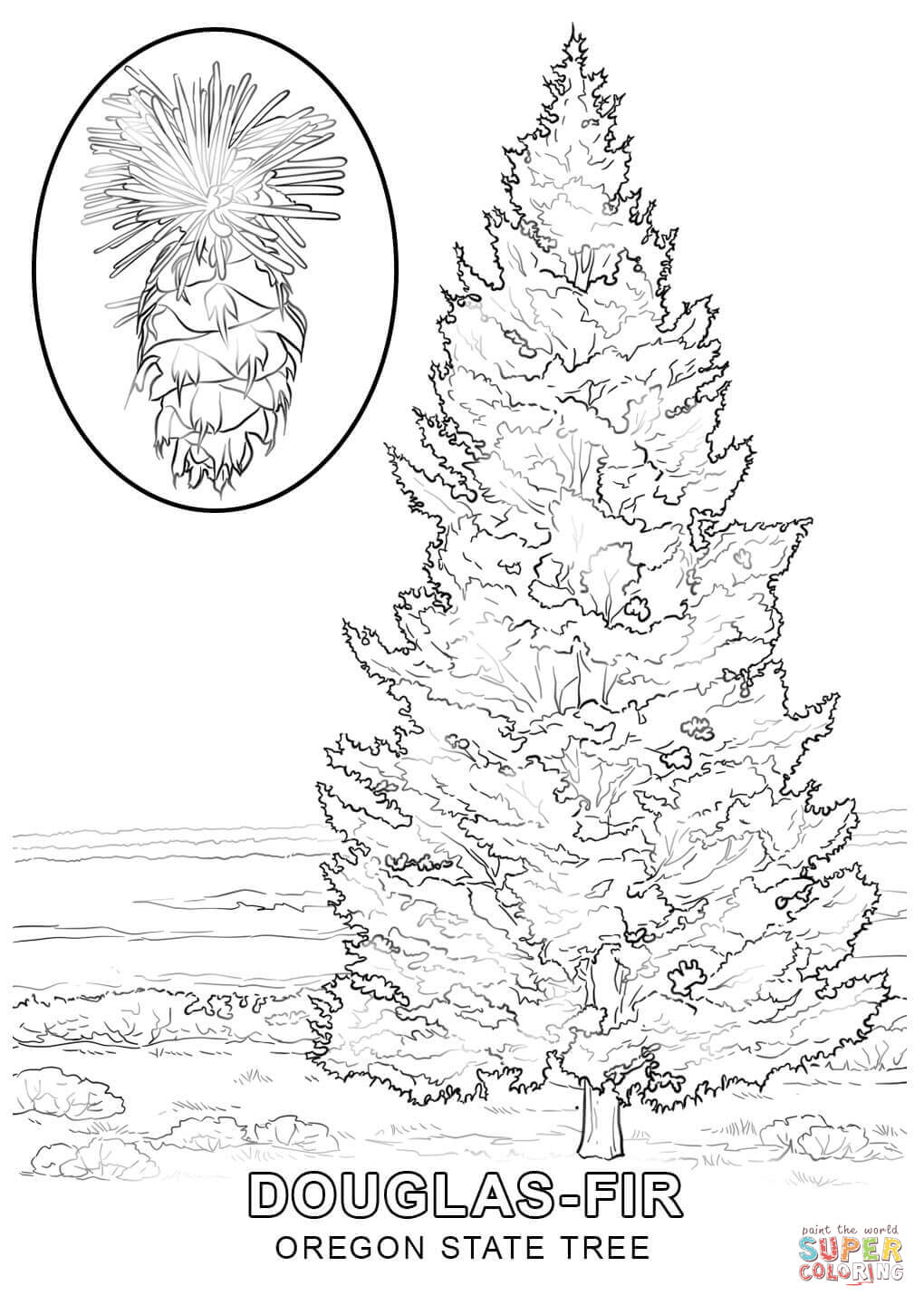 state tree coloring pages maine state tree coloring page free printable coloring pages coloring pages state tree