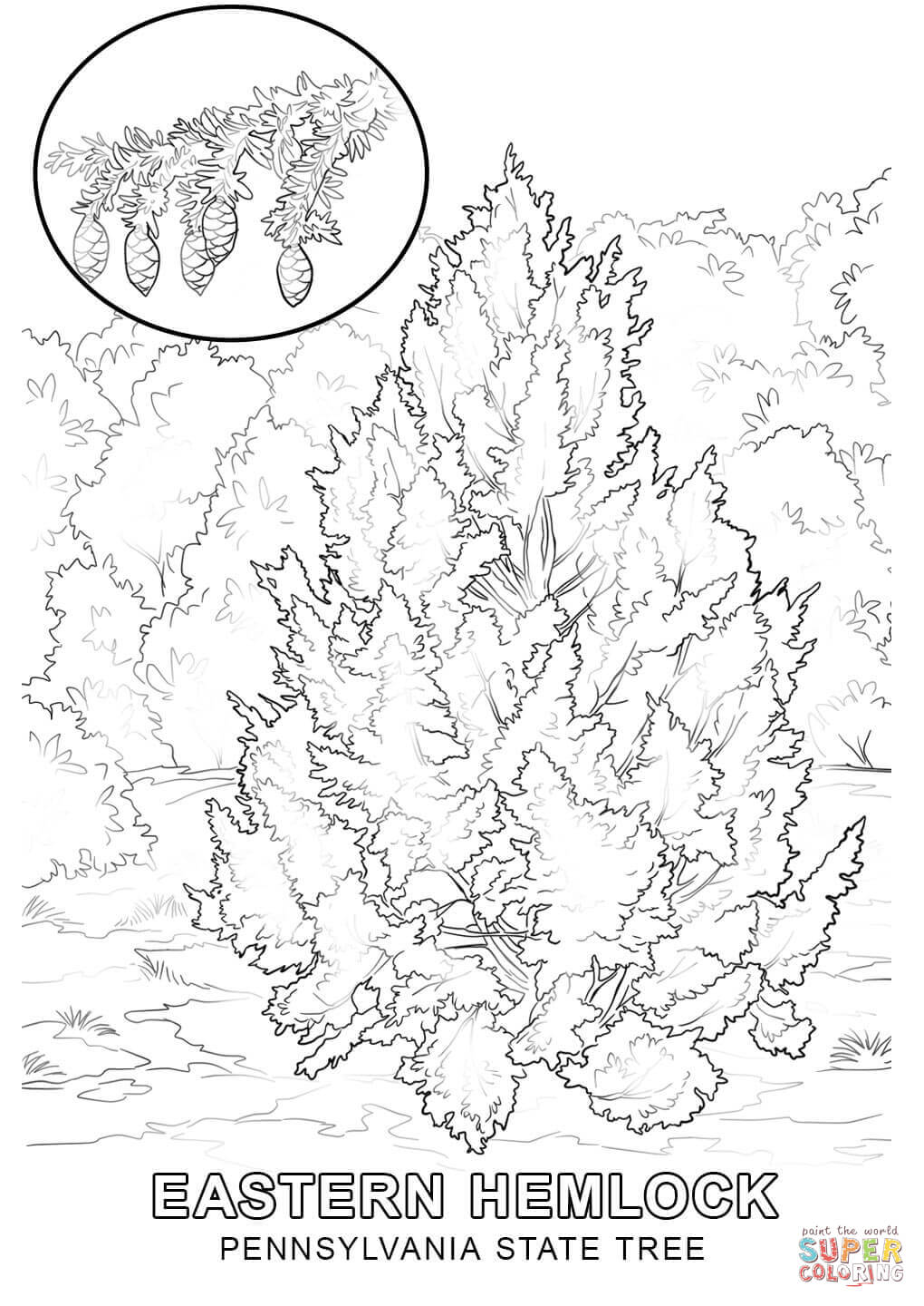 state tree coloring pages montana state tree coloring page free printable coloring tree coloring state pages
