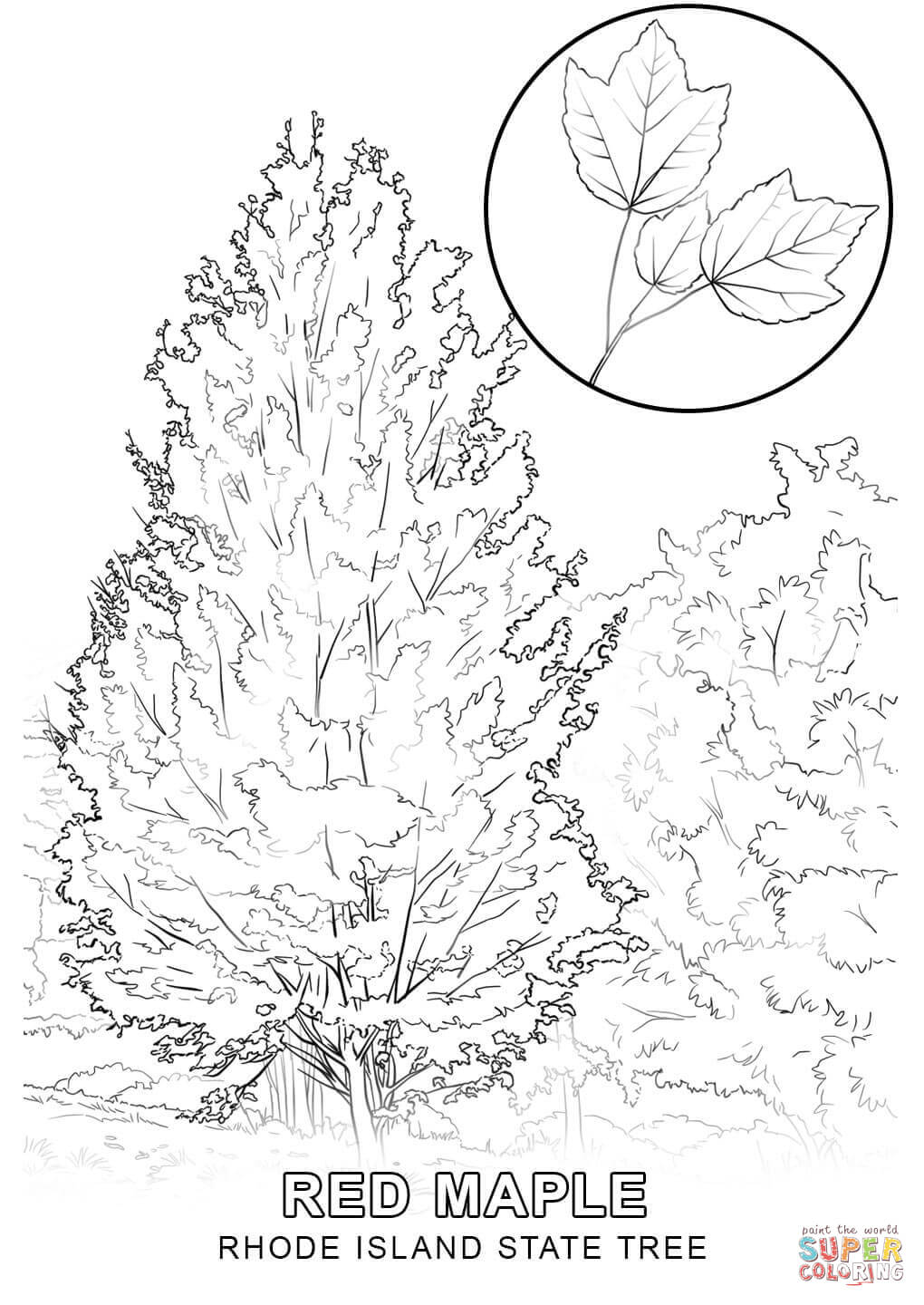 state tree coloring pages nevada state tree coloring page free printable coloring state tree coloring pages
