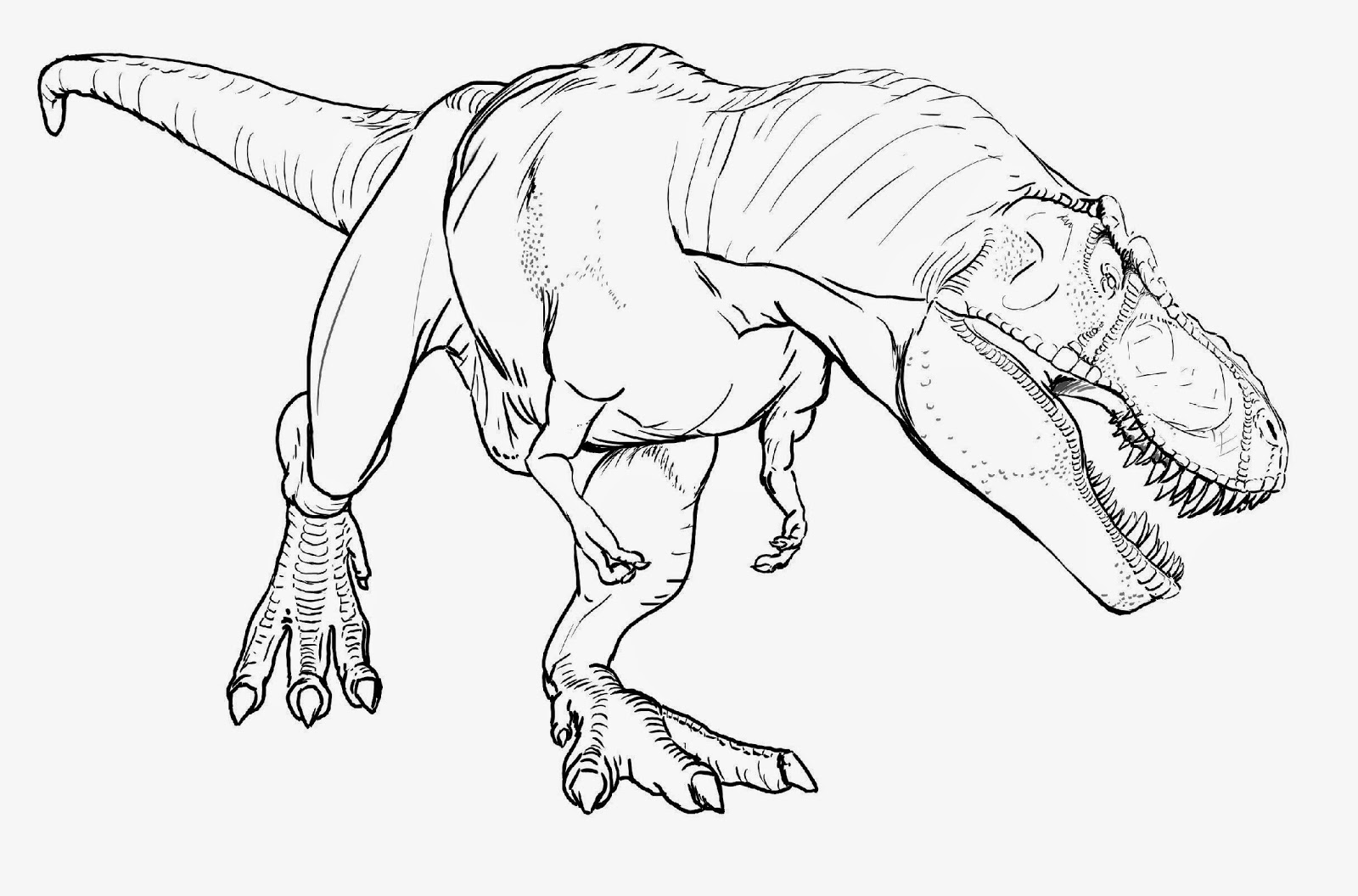 t rex colouring pictures t rex coloring pages free printable images for coloring t pictures colouring rex