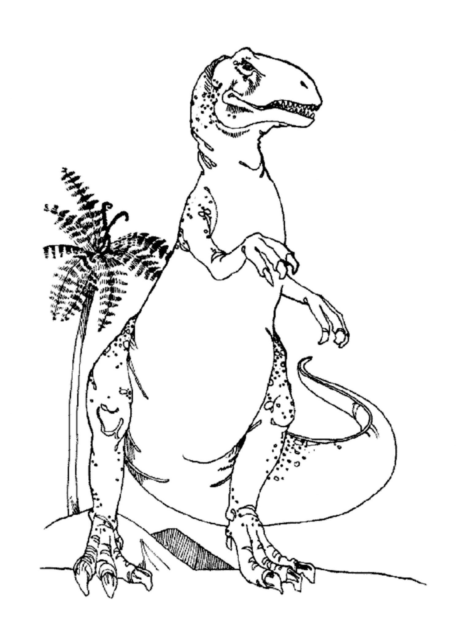 t rex colouring pictures t rex coloring pages to download and print for free t colouring rex pictures