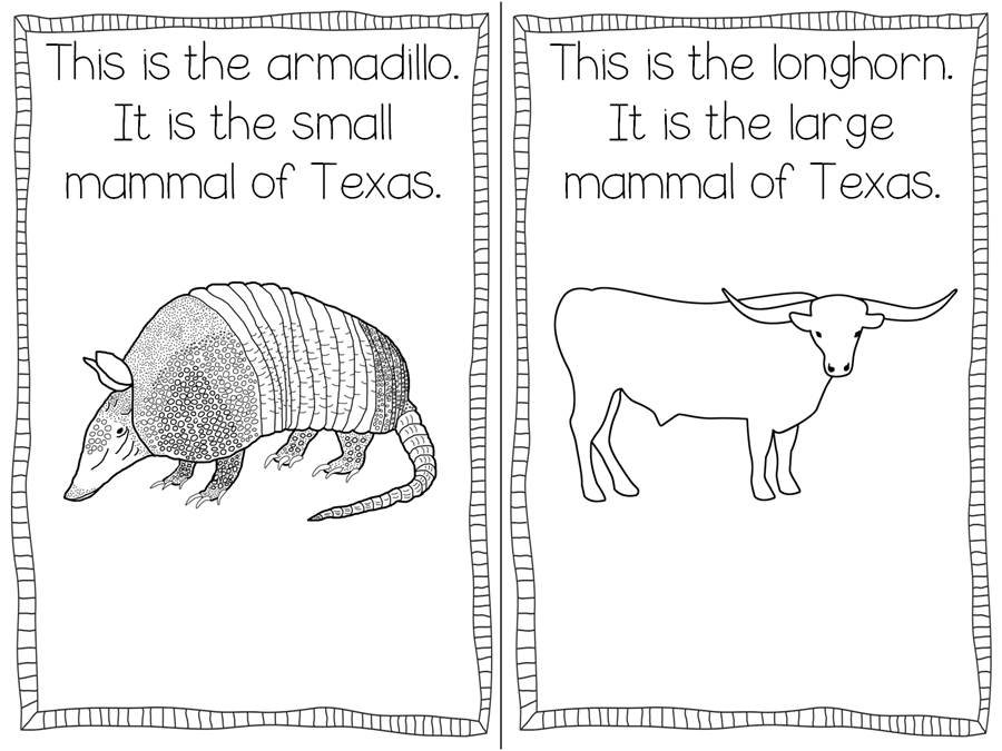 texas symbols coloring pages texas symbols freebie teaching with haley o39connor pages symbols texas coloring
