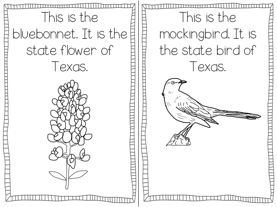 texas symbols coloring pages texas symbols freebie teaching with haley o39connor symbols pages coloring texas