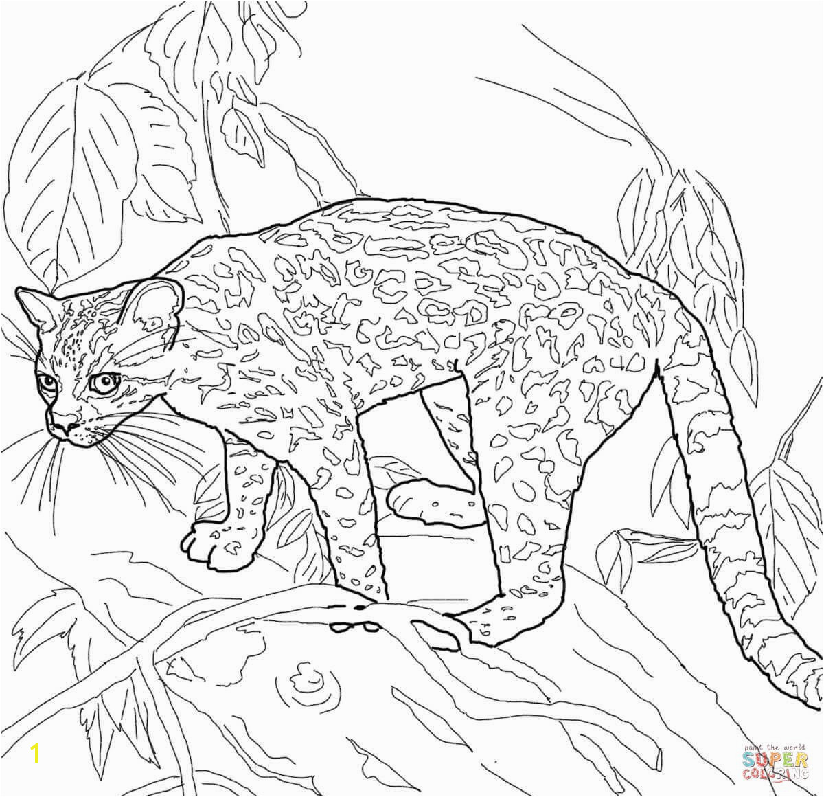 the rich fool coloring page parable of the rich fool coloring page divyajananiorg fool coloring the page rich