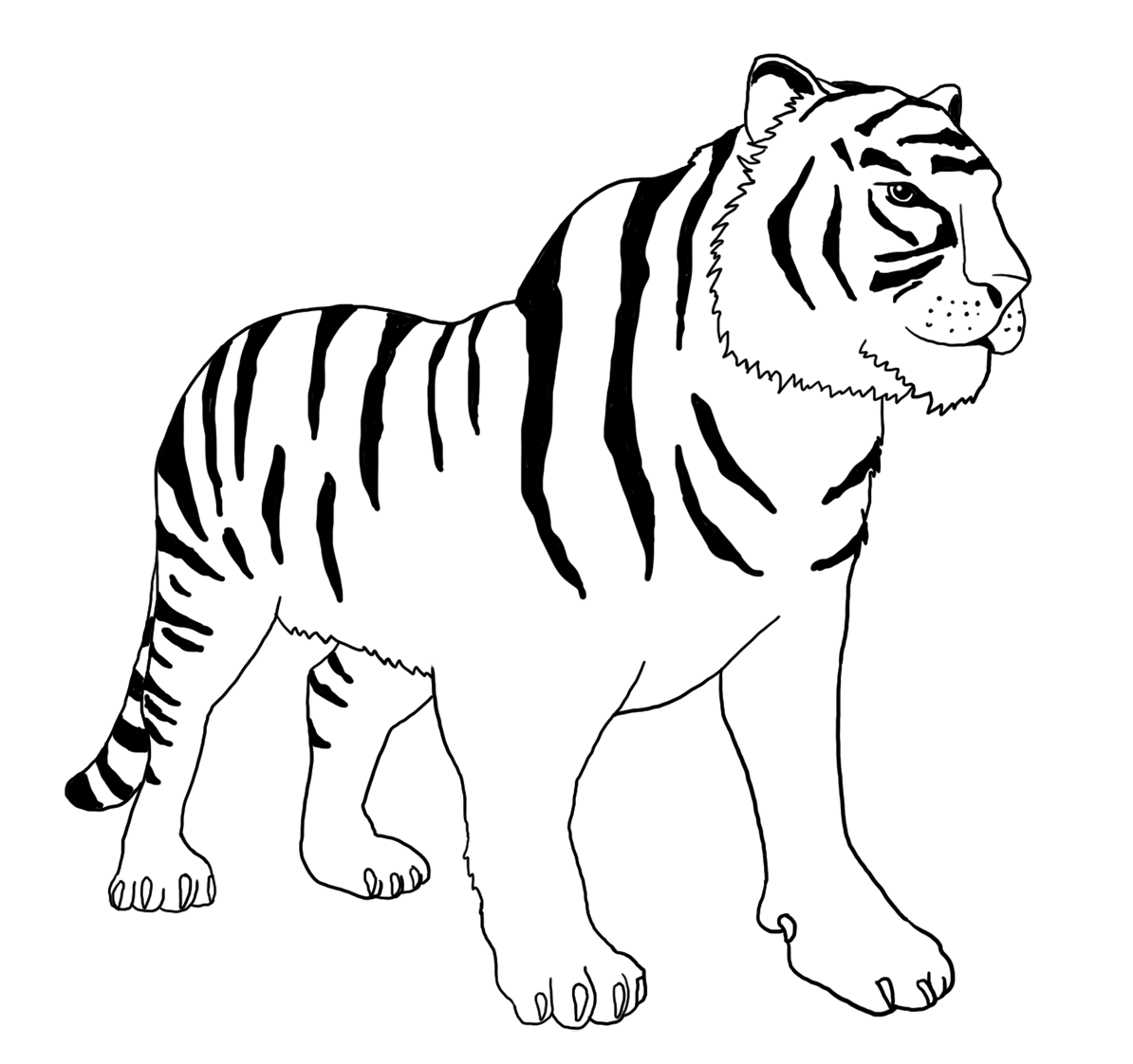 tiger coloring book pages tiger coloring pages pages coloring book tiger