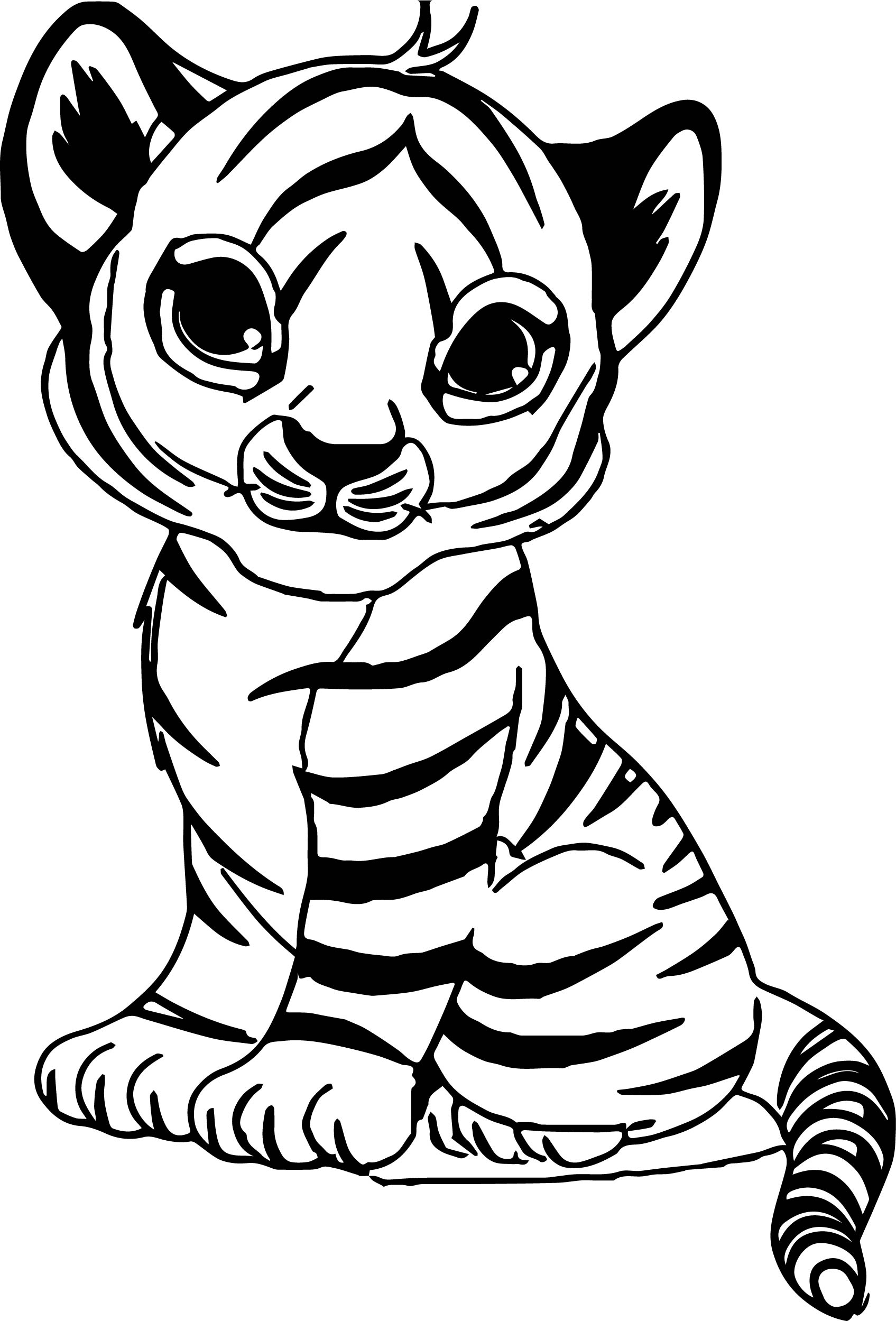 tiger colouring pictures tiger coloring pages at getdrawings free download colouring tiger pictures