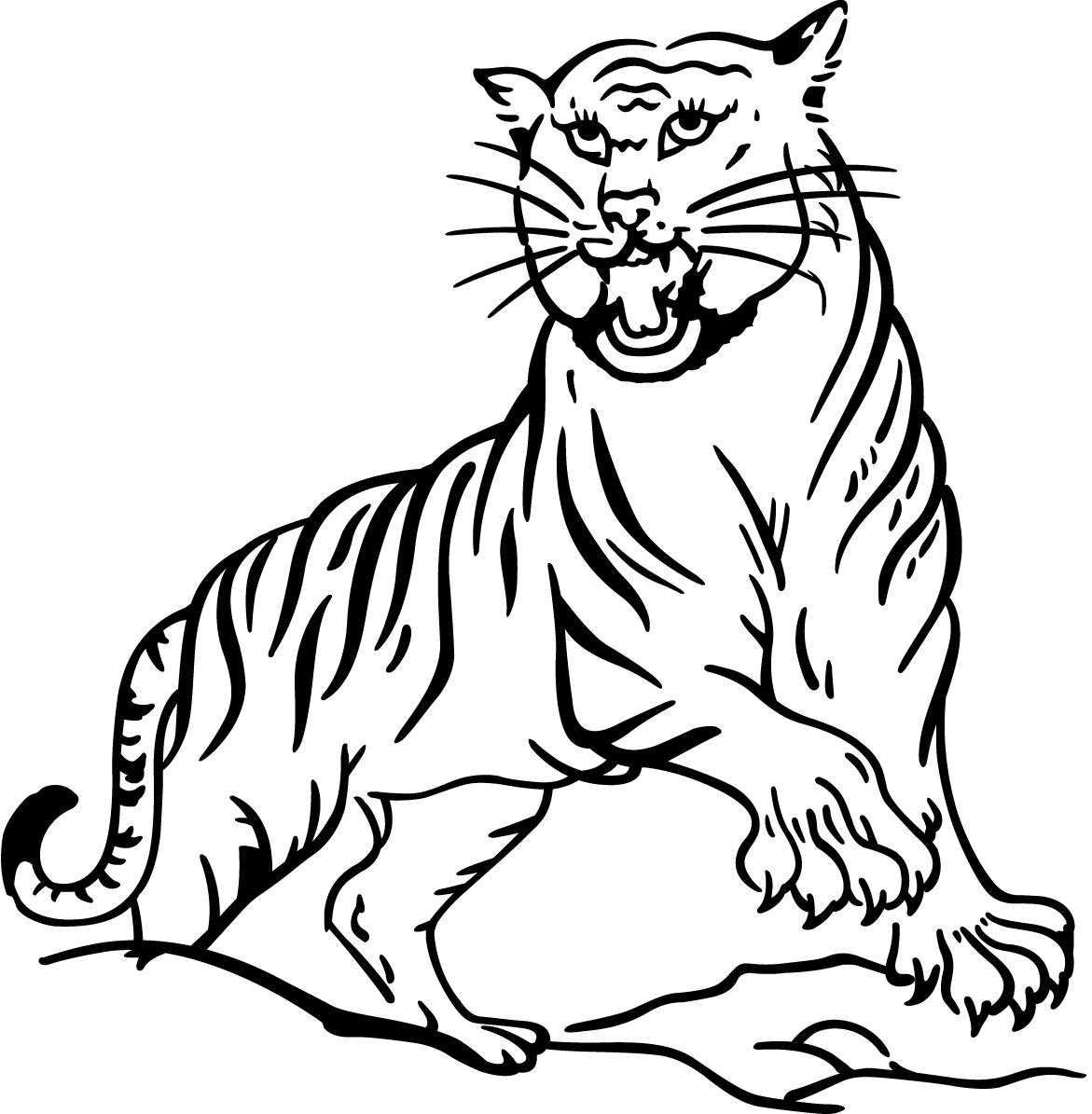 tiger colouring pictures tiger line drawing at getdrawings free download tiger pictures colouring