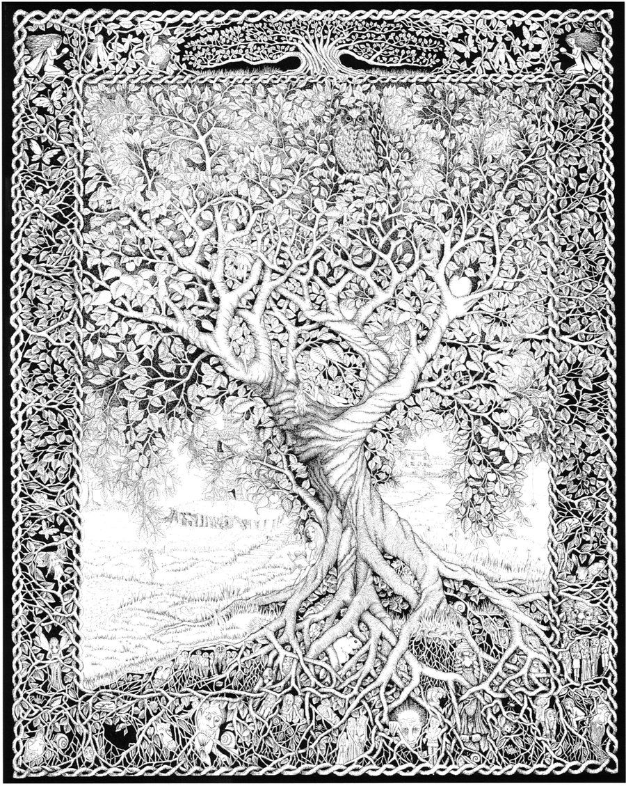tree of life coloring tree of life adult coloring page of coloring tree life