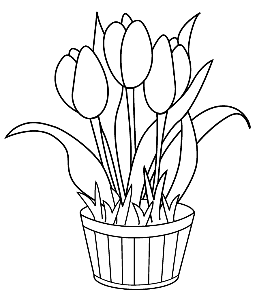 tulip coloring pictures coloring page tulips coloring tulip pictures