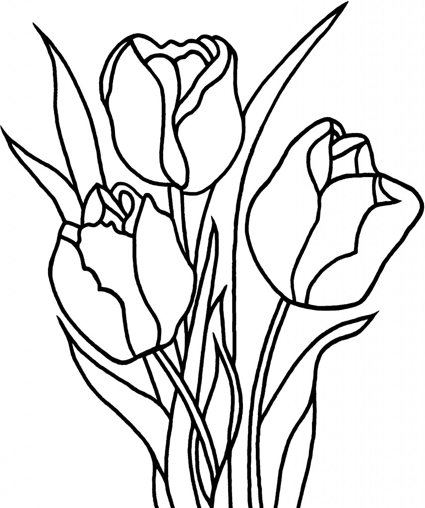 tulip coloring pictures free printable tulip coloring pages for kids coloring tulip pictures